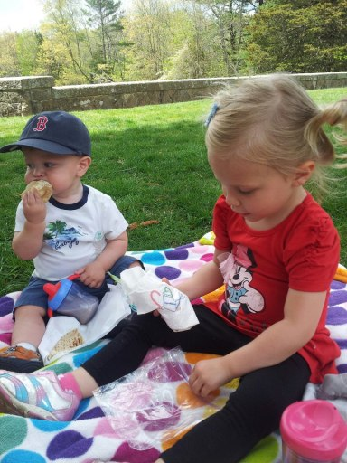 We love picnics!