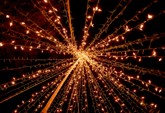 ph-tt-B-holiday-hoesch-lights
