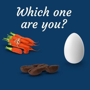 carrot, egg, coffee bean.jpg